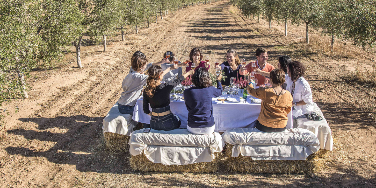 olivenoel-tasting-im-olivenhain