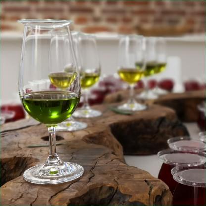olivenoel-seminar-olive-academy